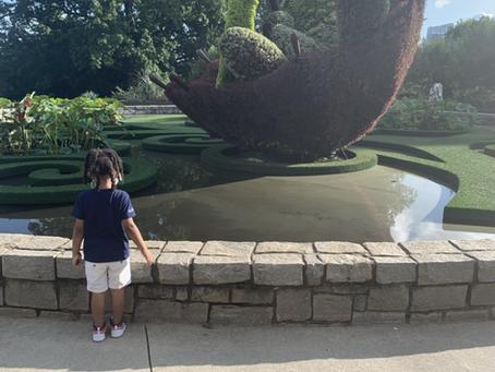 Atlanta Botanical Garden During Covid