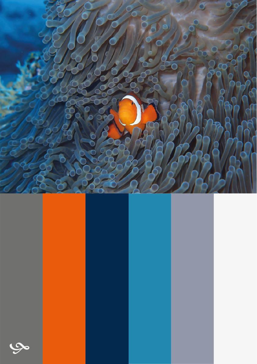 Färgprofil - Inredningskonsultation