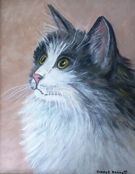 Portrait of a Kitty 8x10 Oil on Canvas B