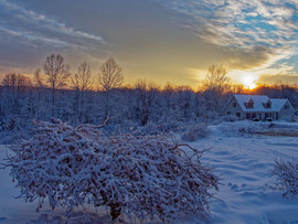 Pandemic Winter Sunrise