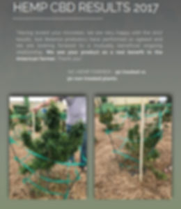 soil b pro 2.JPG