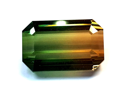 49.39 ct Magnificent Bi Color Tourmaline Loose Gemstone from Mozambique