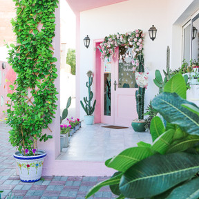 The Pink Door (1).jpg