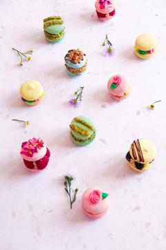 Dessert- Fancy-Pants Macarons.jpg