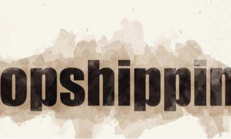 Dropshipping新手指南,让你彻头彻尾明白如何做独立站