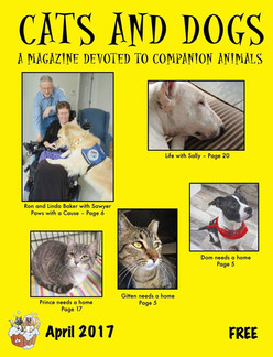Cats and Dogs Magazine