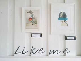 Like Me As You Do | Scandinavian Collage Museum | Scandinavia | 2016