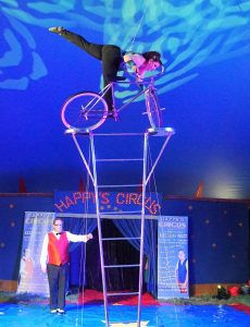 Happys-Circus-High-Cycle-230x300.jpg