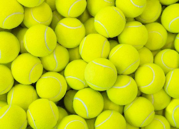 SINGLE DAY: Dormansland Tennis Club 12-15 April 2021