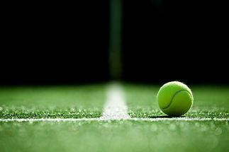 soft focus of tennis ball on tennis gras
