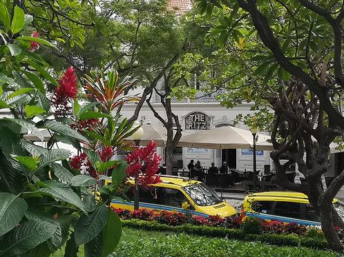 Hörblog Ep 8 Der botanische Garten Madeira