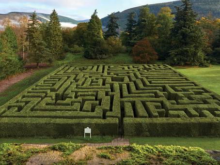 Traquair House | Maze