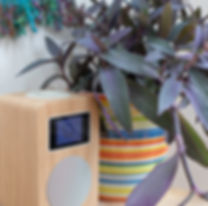 DAB radio and Bluetooth speaker