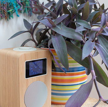 DAB radio and Bluetooth speaker