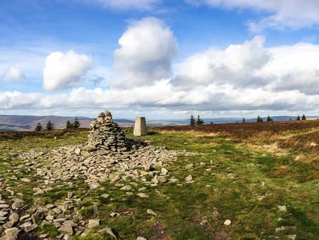 Cross Borders Drove Trail | Selkirk