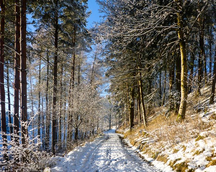 Corby Linn, Selkirk, The Scottish Borders