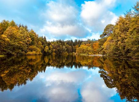 Autumn in the Scottish Borders