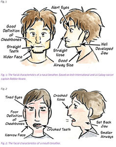 Image result for nose breathing and mouth breathing