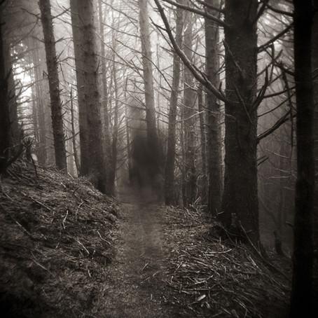 The Ghosts We Leave Behind (poem)