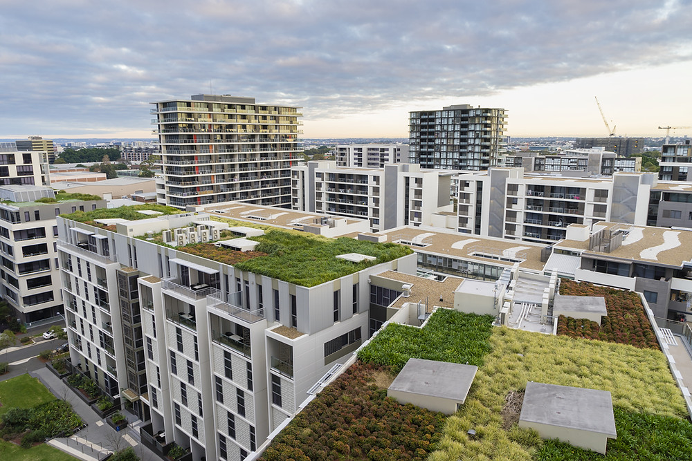 Urban landscape overlooking rooftop gardens on several apartment or office buildings.