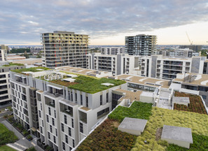 Why Green Roofing?