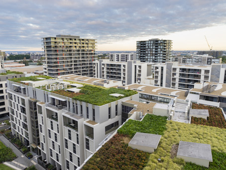 Green Roofs Perks and Policies - Making our cities green one roof at a time!