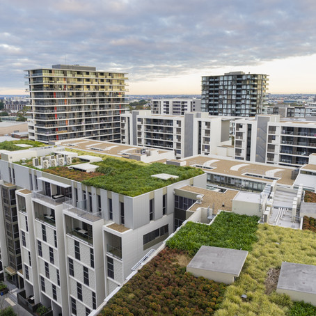 The Benefits of Green Roofs in Urban Areas