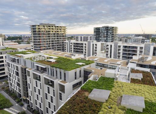 The Green Economy