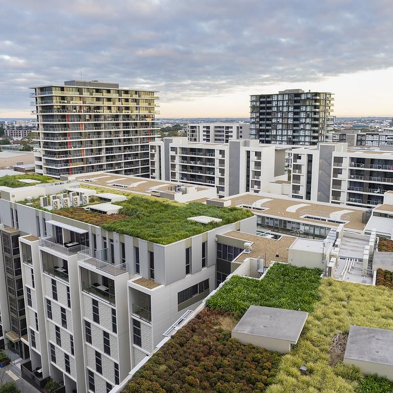 Устойчивое развитие урбанизированных территорий – необходимая адаптация  сегодня.