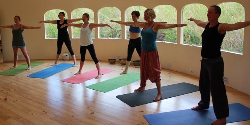 Yoga, Meditation og Detox