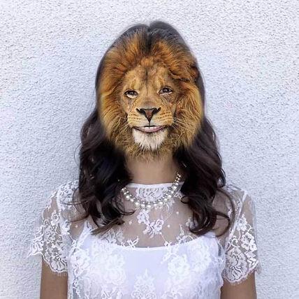 lion_700x.jpg