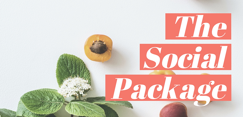 _The Social Package Website Banner final