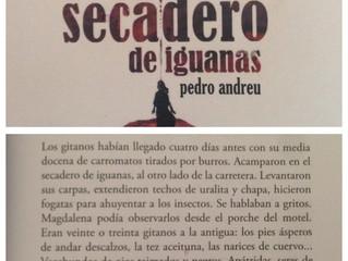 El secadero de Iguanas de Pedro Andreu