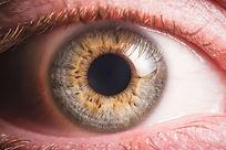 Human eye detail.jpg