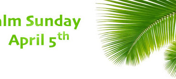 Palm Sunday April 5: Drive Thru at St. Coleman's from 9:00am - 11:30am to Get Your Palms!!!