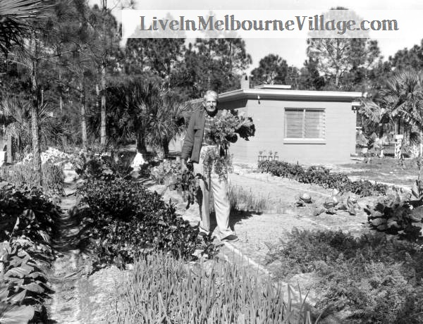 Live In Melbourne Village Man with Vegetables.jpg