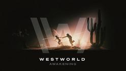 Westworld-Awakening.jpg
