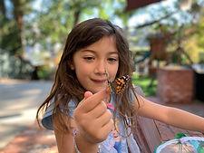 Vanessa Petersen butterfly.jpg