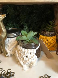 Macrame Succulent Gifts