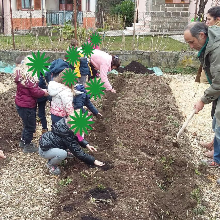 Les petits plantent pomme de terre