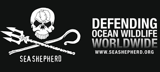 Aloha Seafood soutient Sea Shepherd