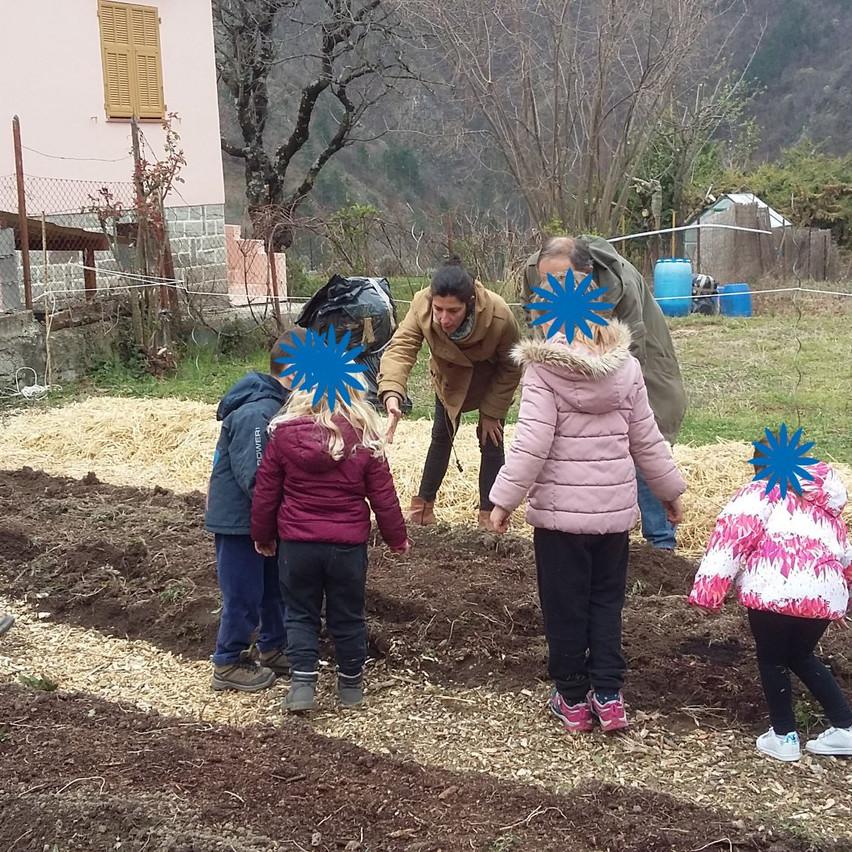 On plante les pomme de terre