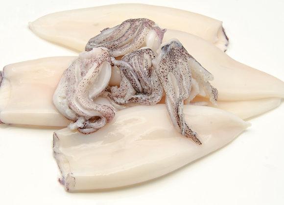 CALAMARS - ENCORNETS / SQUIDS