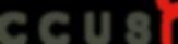 ccusi logo.png