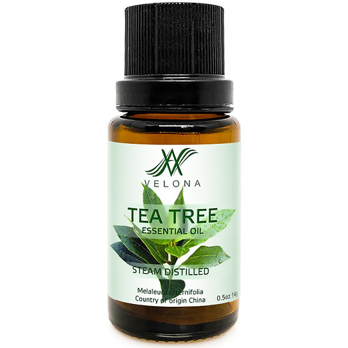 Tea Tree Essential Oil by Velona Therapeutic Grade for Aromatherapy Undiluted