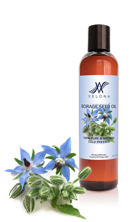 Borage Seed Oil by Velona Refined, Cold pressed, Skin, Face, Body, Hair
