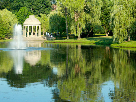 What You Need to Know Before Moving to Brookline, MA