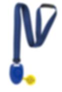 CV_Badge.png