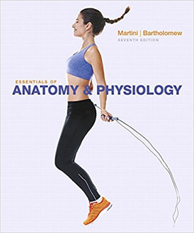 Essentials of Anatomy and Physiology is intended for one-semester courses. It is used in high schools and at the undergraduate college level for students in general studies or biology programs, sometimes as an overview for pre-med students, and for allied health programs for lab techs, nurses assistants, and so forth.