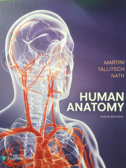 Human Anatomy is the first and only A&P text using the oversize atlas format, which allows for the parallel presentation of illustrations and anatomical photographs. It has won two Textbook of the Year awards, a design award at the NY Book Fair, an illustration award from the Society of Academic Authors, and an award for medical illustration.